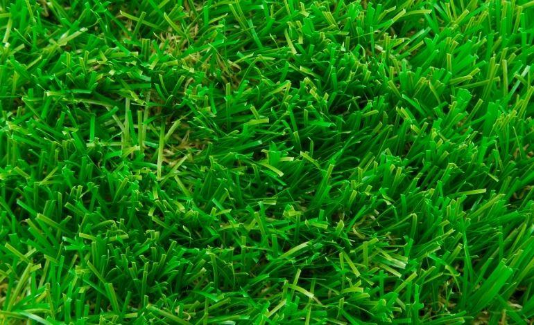 Artificial Grass standing